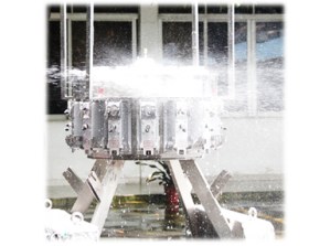 IP65 Waterproof Weigher